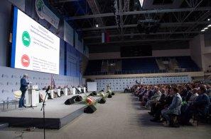 Среднерусский экономический форум-2015 (18).jpg